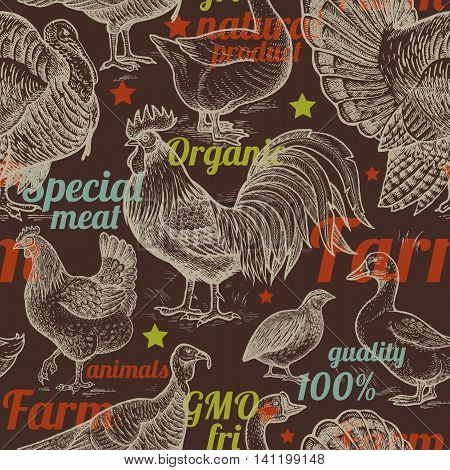Seamless pattern with poultry inscriptions. Vector illustration. Farm birds in style of vintage engraving. For packaging farm products farm food shops. Goose rooster chicken turkey duck quail.