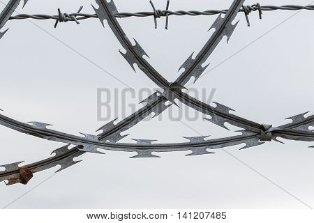Close up of crossed pieces of corroded razor and barbed wire on white background