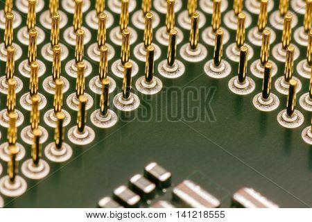 Computer processors CPU (green color).  Macro .
