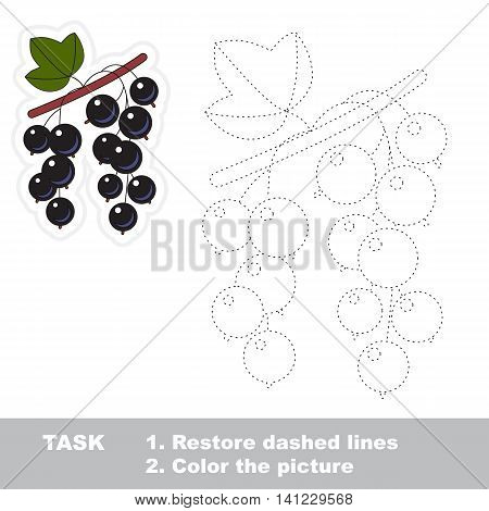 Blackcurrant in vector to be traced. Easy educational kid game. Simple level of difficulty. Restore dashed line and color the picture. Trace game for children. Vector