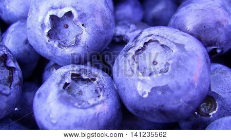blueberries  Fresh Blueberries or Bilberries. group of blueberry or stack of blueberries concept for blueberry diet or healthy diet with berries.