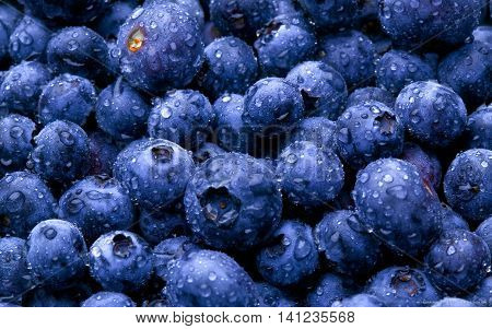 blueberries  Fresh Blueberries or Bilberries. group of blueberry or stack of blueberries concept for blueberry diet or healthy diet with berries.
