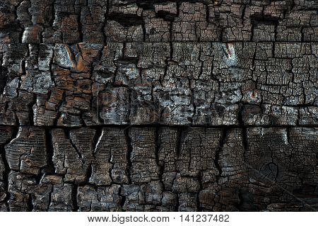 Close Up Of Charred Wood Background Texture