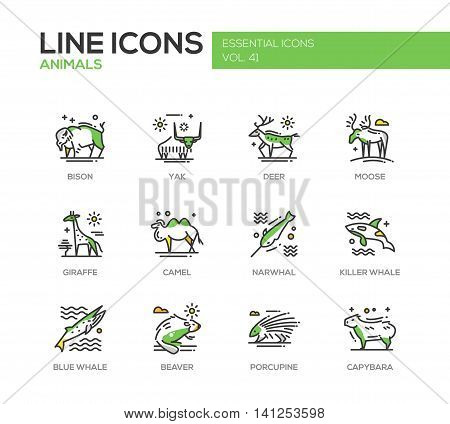 Animals - set of modern vector line design icons and pictograms of animals. Bison, yak, deer, moose, giraffe, camel, narwhal, killer whale, blue whale, beaver porcupine capybara