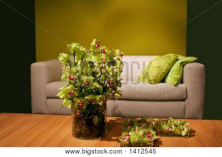 Orchids In Interior
