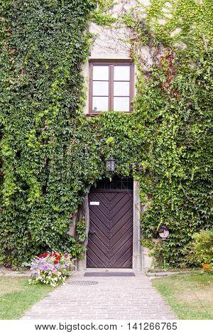 Wooden close door and green wall in Pieskowa Skala Palace - Poland.