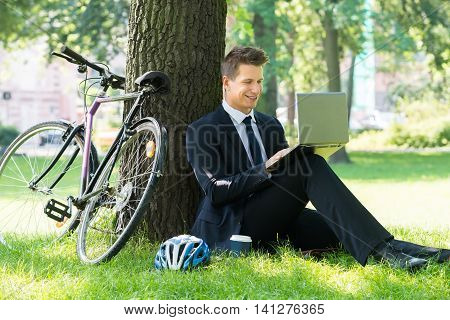 Smiling Young Male Businessman Using Laptop In Park