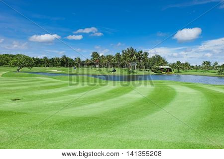 Landscape Wide green lawns and a blue sky ,golf courses.