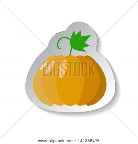 Pumpkin vector icon in flat style with shadow. Vegetable pictogram. Pumpkin illustration on white. Pumpkin isolated. Pumpkin cook ingredient. Healthy vegetarian food. Pumpkin logo patch background