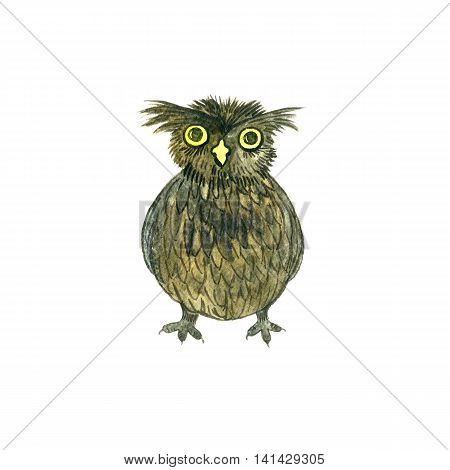 watercolor cartoon doodle owl, drawing bird isolated at white background, hand drawn illustrtion