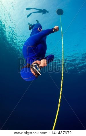 Freediver descending along the rope. Free immersion discipline
