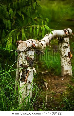 Birch fence at a forest track . .