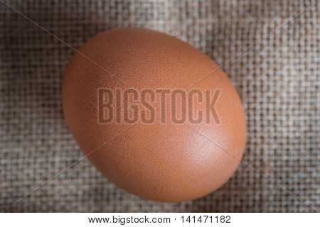 Close up of fresh chicken egg on the table.