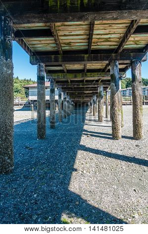 A view from beneath the pier at Redondo Beach Washington at low tide.