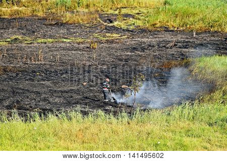 Firefighter at work on a summer day near an extinguished wildfire