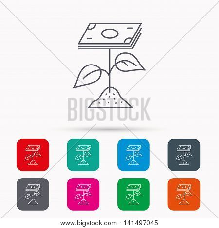 Profit icon. Money savings sign. Flower with cash money symbol. Linear icons in squares on white background. Flat web symbols. Vector