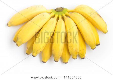 Prata Banana on white background. (Musa x paradisiaca L. Musaceae)