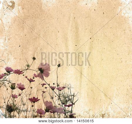 flower old worn paper texture background