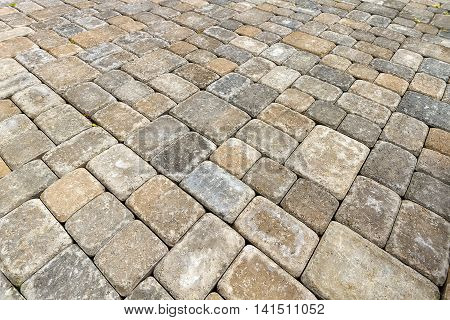 Brick Paver Patio in Garden Backyard Hardscape Closeup Background