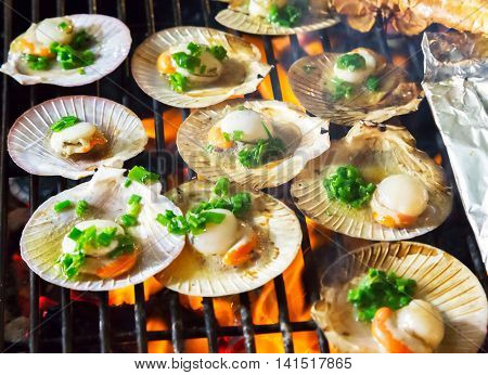 Barbecue Grill Seashell Meat