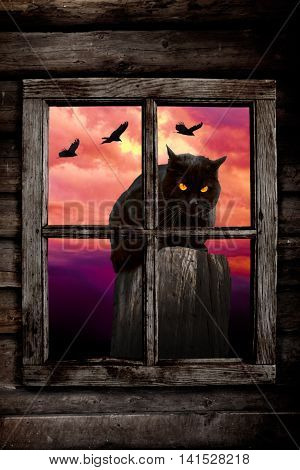 Black cat behind a window with ravens flying in the background on the night of Halloween