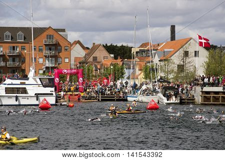 FREDERICIA DENMARK - AUGUST 6 2016: Triathletes swimming in Old Harbor at the triathlon competition Challenge Denmark in Fredericia August 6 2016.