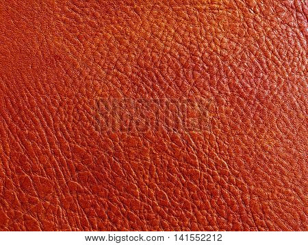 Abstract Color Leather Surface.