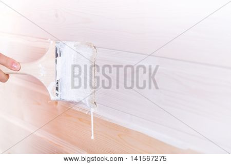 Woman Painting Wooden Boards In White Color With Brush