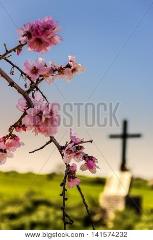 EASTER.Death and rebirth: the tomb and almond flowers(Apulia)-ITALY-