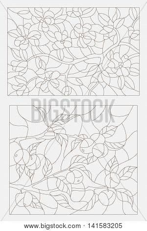 Set contour illustrations blooming Apple tree branch and the branch with fruit
