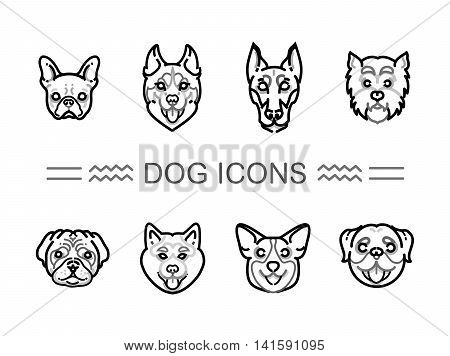 Set icons dogs. vector icons dog breeds