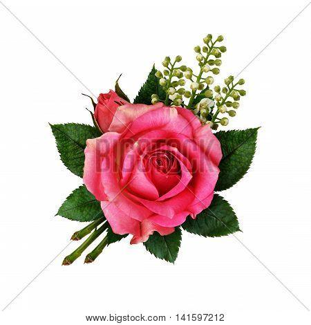 Pink rose flower arangement isolated on white