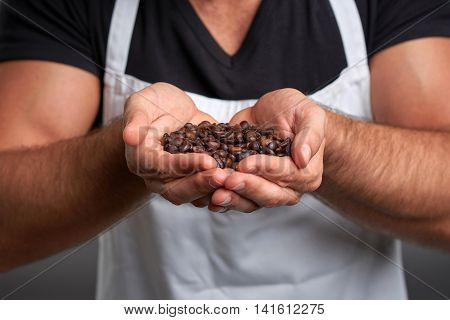 Coffee beans in the hands of a young barista man.