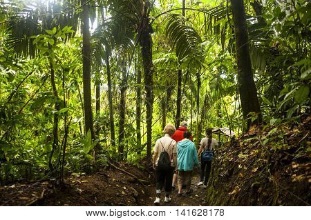 La Fortuna, Costa Rica - February 23, 2014: tourists discover the rainforest surrounding the Arenal Volcano