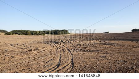 agricultural field, plowed after harvest, the summer season, the car tracks on the ground,