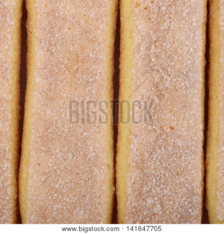 Surface covered with the multiple ladyfinger savoiardi biscuit cookies as a backdrop texture composition