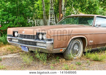Rusting Car In Junk Yard