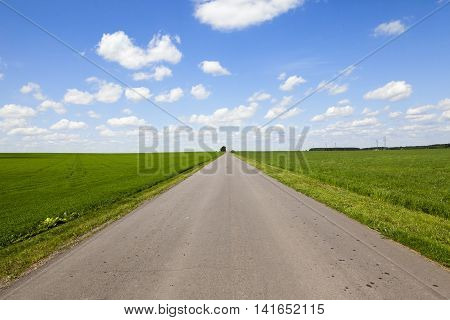 paved country road, passing through an agricultural field