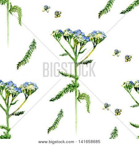 seamless pattern watercolor flower Helichrysum milfoil yarrow