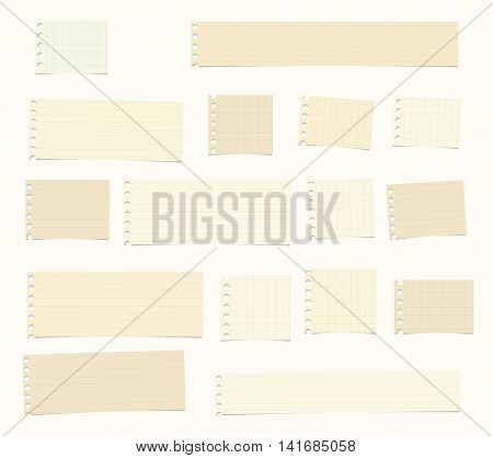 Pieces of cut brown, ruled, math notebook paper