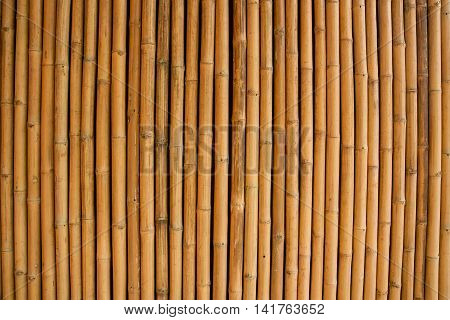 Dry bamboo wall, For texture and background.