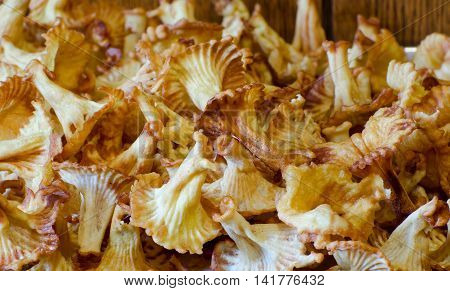 Home appetizer sweet pastries mushroom chanterelle close-up