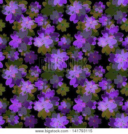 Seamless floral pattern. Wallpaper seamless violet flower pattern black background