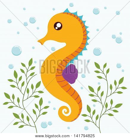 Sea animal cartoon design represented by sea horse icon. Colorfull and flat illustration.