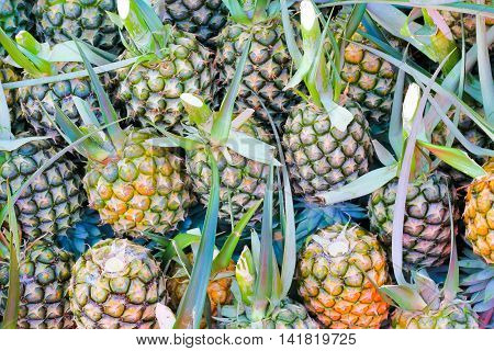 pineapple background.ready for sale in the market .
