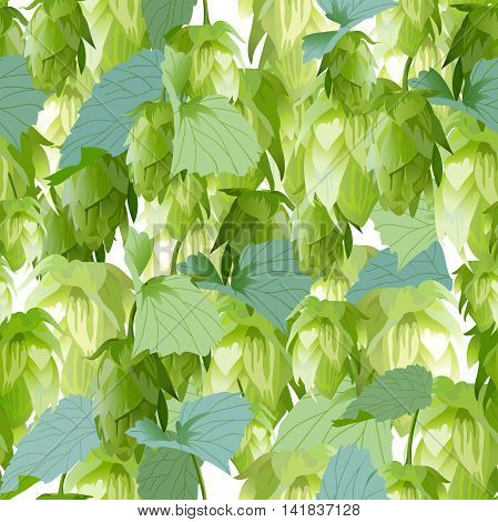 Hops leaves seamless background. Illustration in vector format