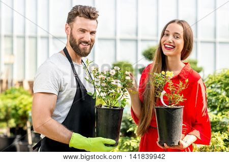 Handsome flower seller helping female buyer to choose a flower standing in the plant store. Customer service in the flower shop