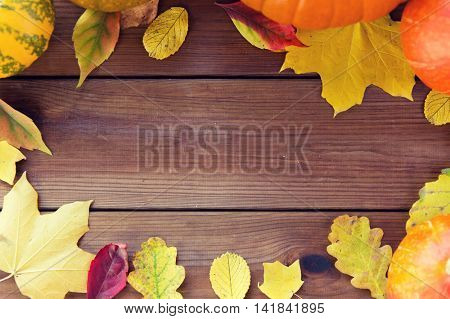 nature, season, advertisement and decor concept - frame of different fallen autumn leaves on wooden board