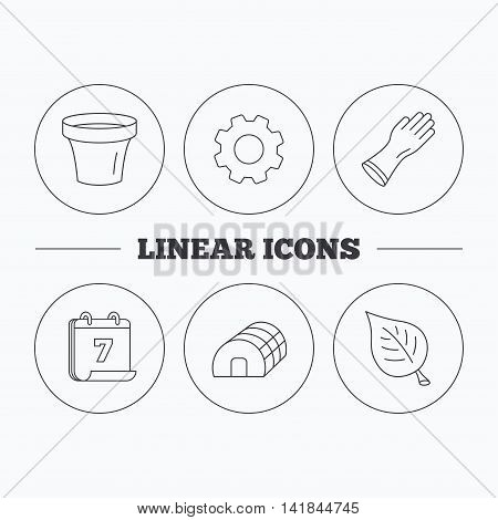 Leaf, scissors and pot icons. Hothouse linear sign. Flat cogwheel and calendar symbols. Linear icons in circle buttons. Vector