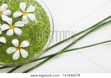 bowl of with white frangipani in water and grove